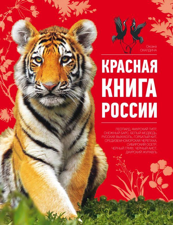 Обложка для красной книги своими руками