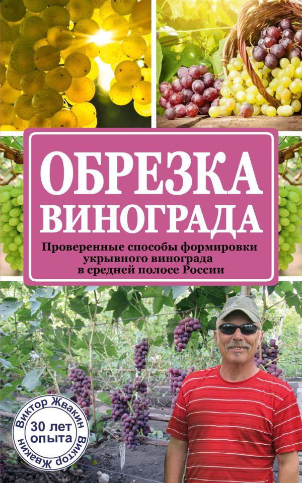 Обрезка винограда. Проверенные способы формировки укрывного винограда в средней полосе России