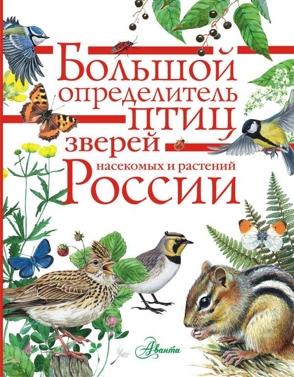«Большой определитель зверей, амфибий, рептилий, птиц, насекомых и растений России»