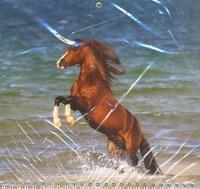 Календарь-2013(кв.тр.спр)Лошадь 01.4.11