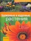 Балконные и кадочные растения
