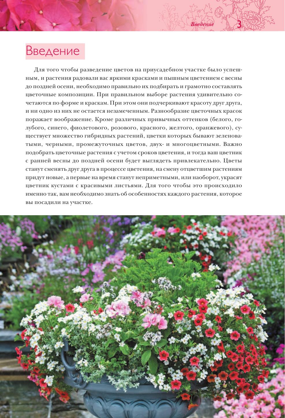 Каталог белые цветы садовые