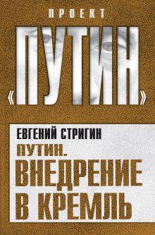 Стригин Е.М. - Путин. Внедрение в Кремль обложка книги