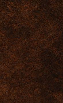 Обложка сзади Двенадцать стульев. Золотой теленок Илья Ильф, Евгений Петров