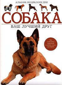 Собака. Ваш лучший друг. Альбом-энциклопедия