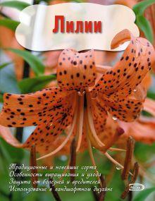 - Лилии (Вырубка. Цветы в саду и на окне (обложка)) обложка книги