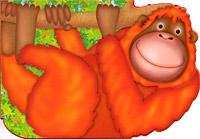 Орангутан-акробат