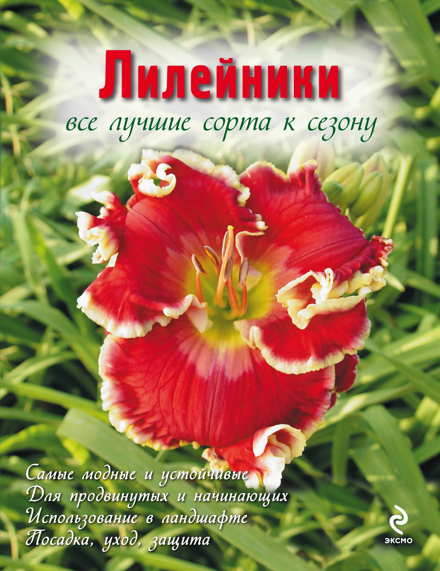 Лилейники. Все лучшие сорта к сезону (Вырубка. Цветы в саду и на окне (обложка))