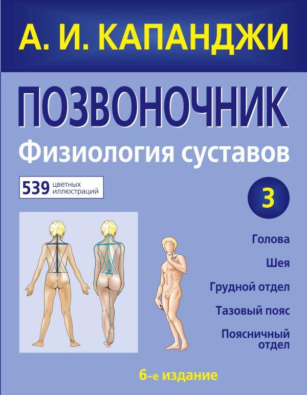 Как работает тело позвоночник суставы и мышцы скачать вальгусня деформация коленных суставов