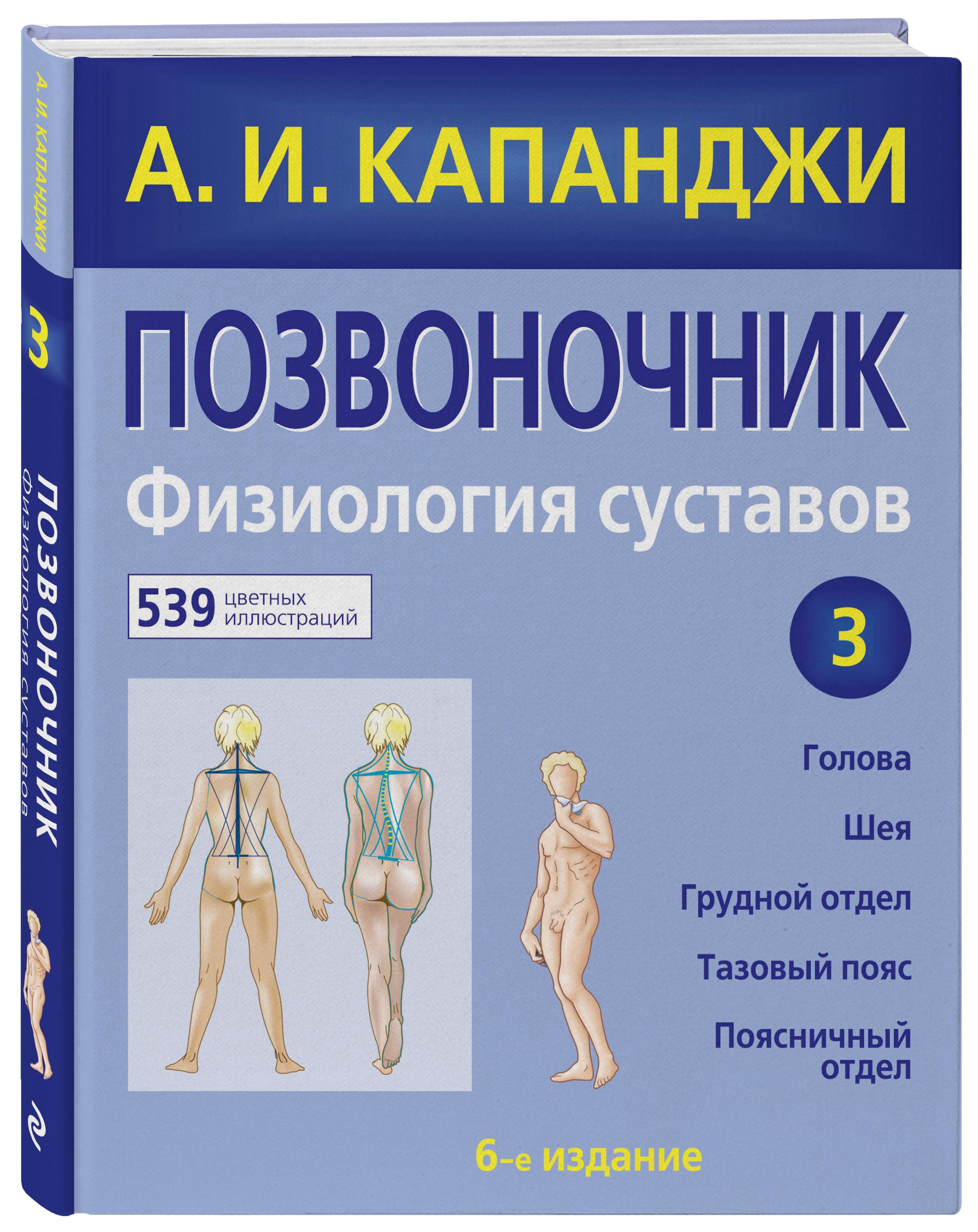 Позвоночник: Физиология суставов ( Капанджи А.И.  )