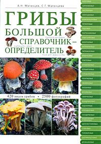Грибы: большой справочник-определитель Матанцев А.Н., Матанцева С.Г.