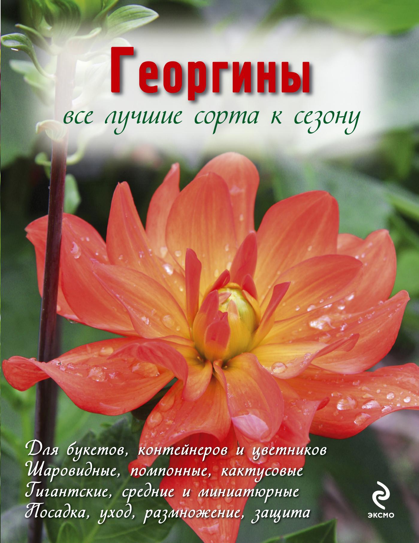 Георгины (Вырубка. Цветы в саду и на окне (обложка)) ( Рубинина А.Е.  )