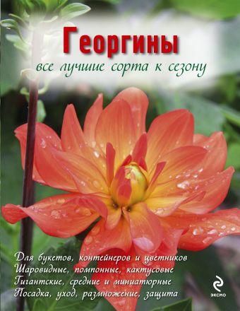 Георгины (Вырубка. Цветы в саду и на окне (обложка)) Рубинина А.Е.