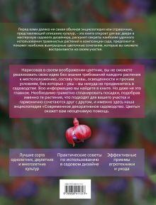 Обложка сзади Современное декоративное садоводство. Цветы. (+CD)
