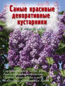 Чуб В.В. - Самые красивые декоративные кустарники в вашем саду обложка книги