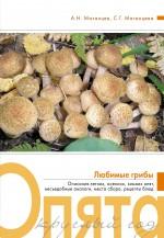 Обложка Опята круглый год Матанцев А.Н., Матанцева С.Г.