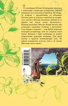 Обложка сзади Стихийное бедствие Ирина Мельникова