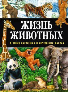 Поуп Д. - Жизнь животных в ярких картинках и интересных фактах обложка книги