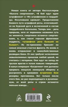 Обложка сзади Встречный бой штрафников Михеенков С.Е.