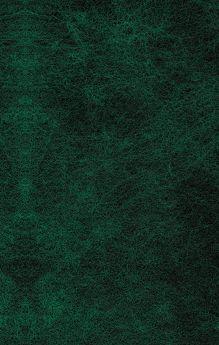 Обложка сзади Затерянный мир Артур Конан Дойл