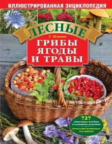 Ильина Т.А. - Лесные грибы, ягоды и травы. Иллюстрированная энциклопедия обложка книги