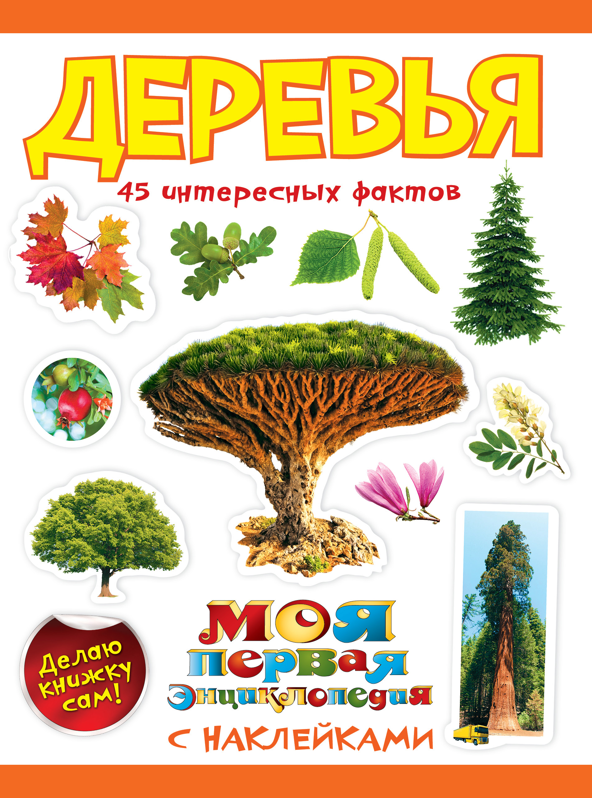 Деревья ( Кривич Е.Я.  )