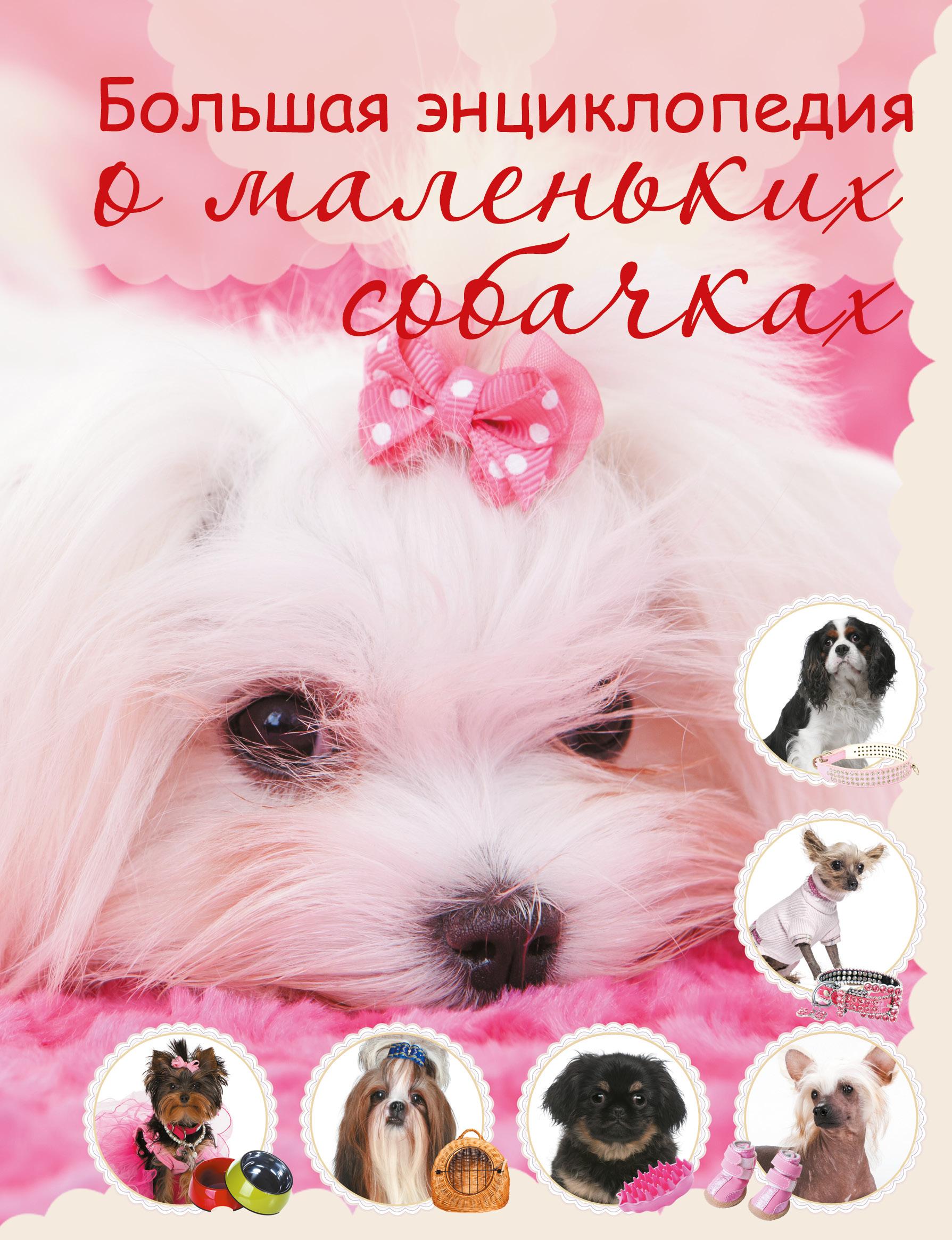 Большая энциклопедия о маленьких собачках от book24.ru