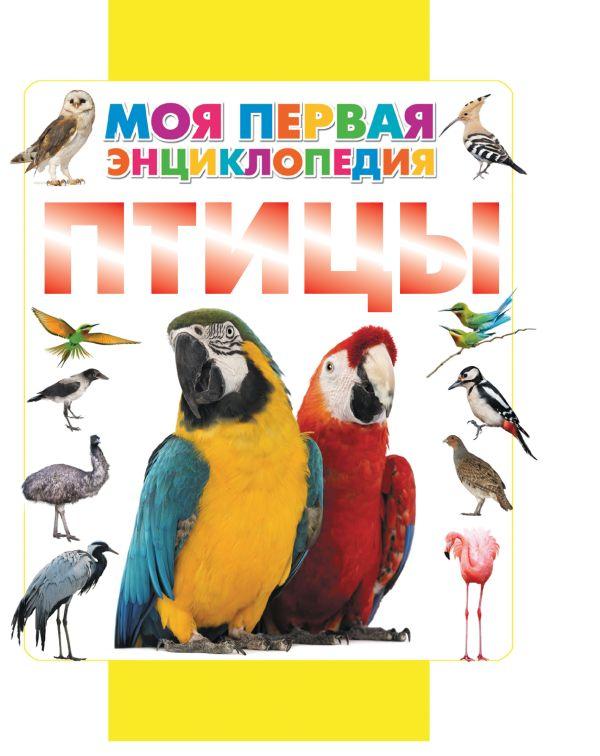 Птицы Кошевар Д.В.