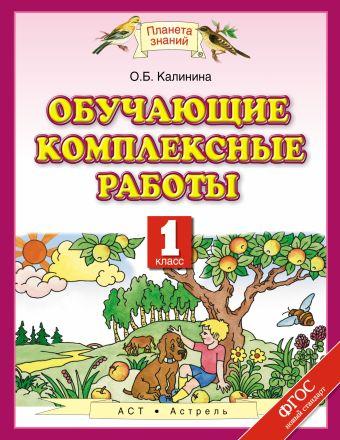 Обучающие комплексные работы. 1 класс. Учебное пособие Калинина О.Б.