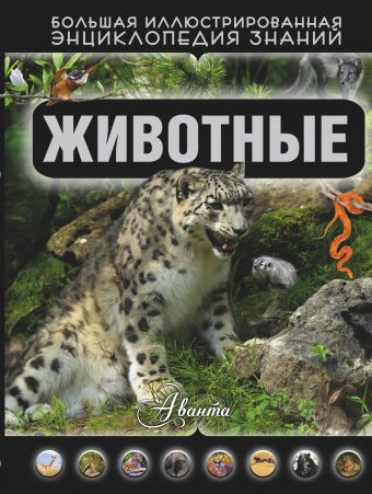 Животные Кошевар Д.В.