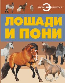. - Лошади и пони обложка книги