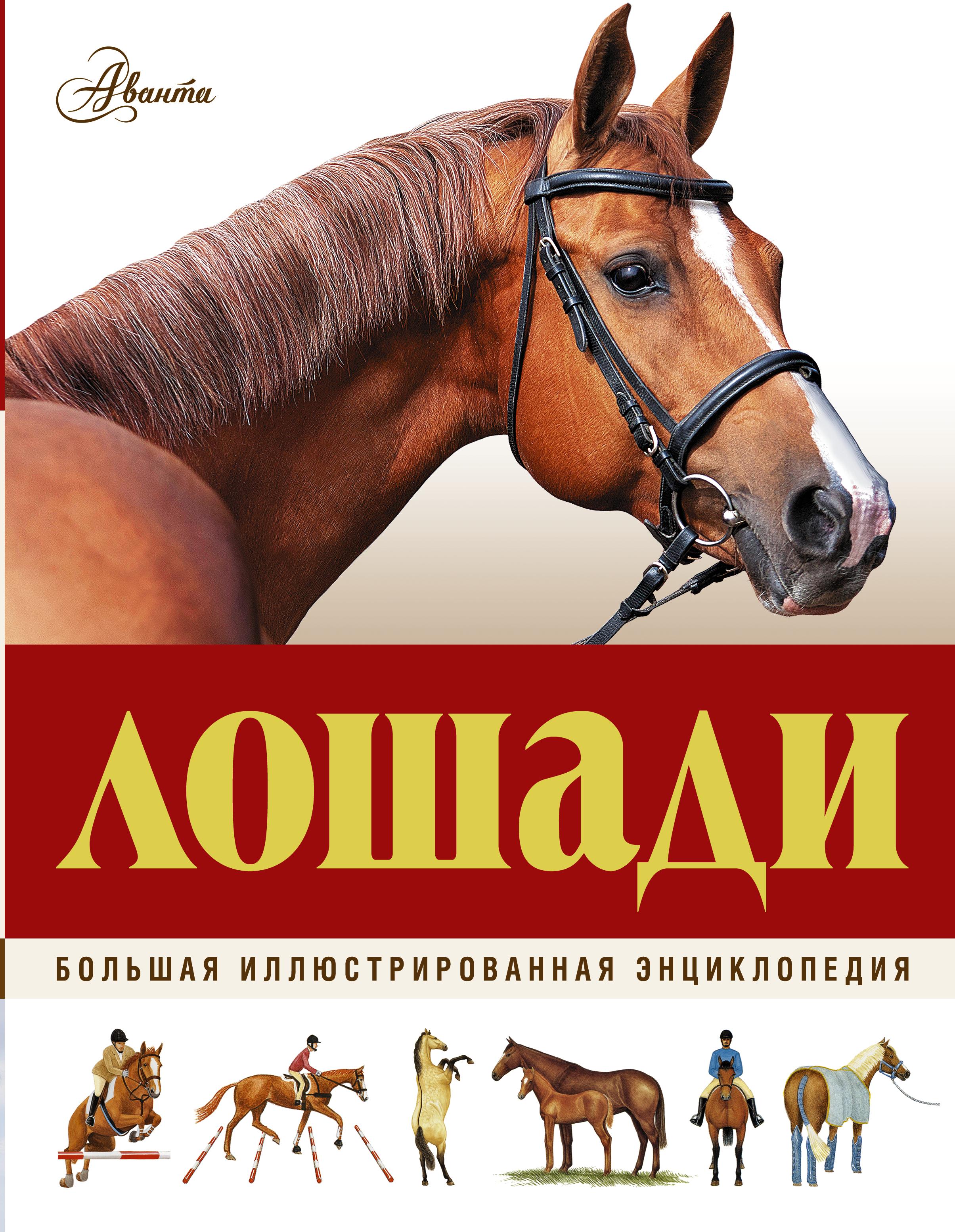 Большая иллюстрированная энциклопедия. Лошади