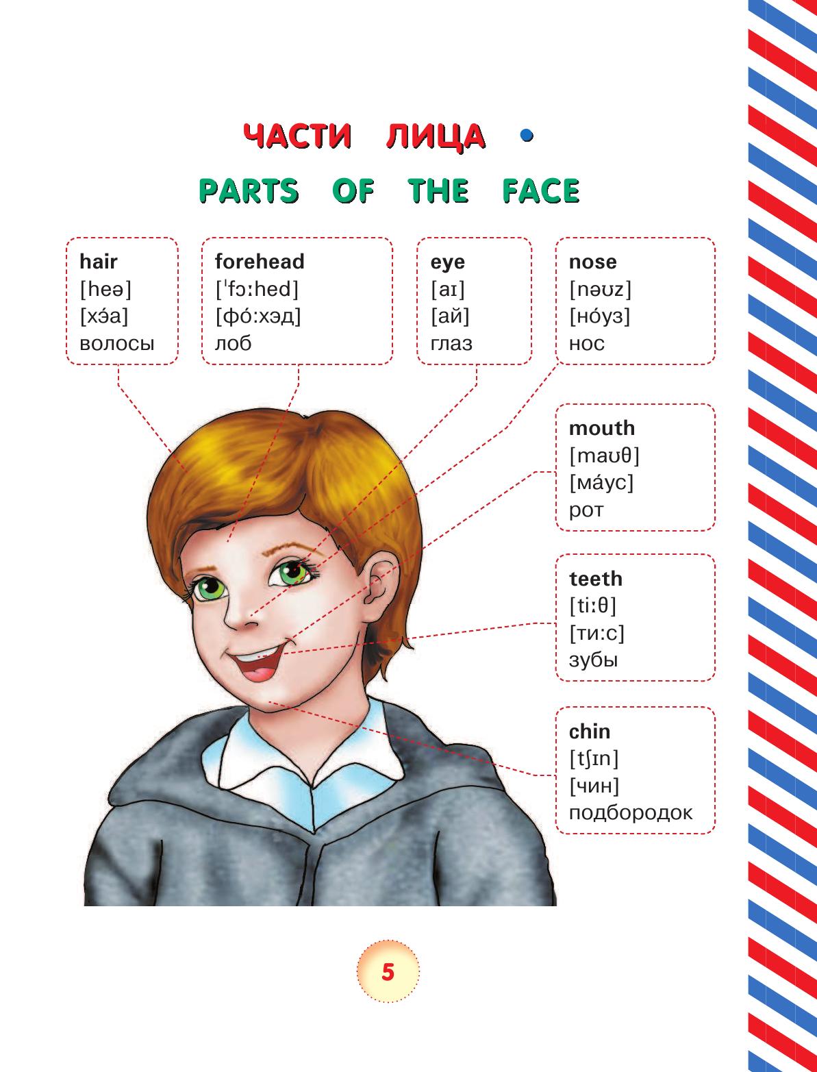 Картинки для детей английские слова