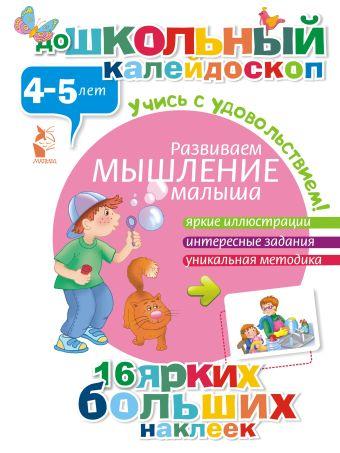 Развиваем мышление малыша (4-5 лет) .