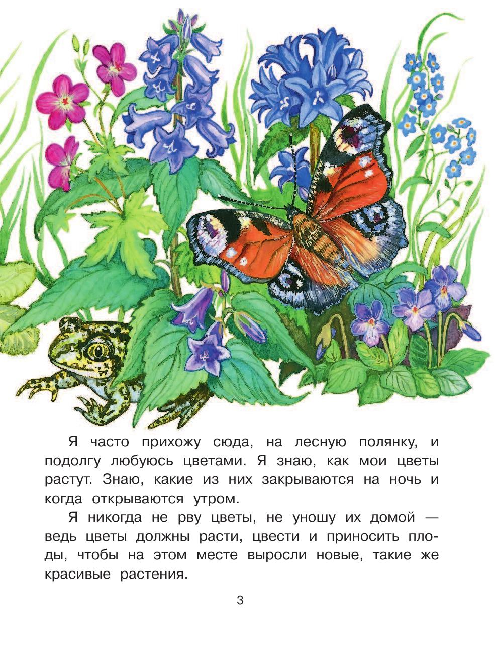 Книга Что растёт на лесной поляне  Онегов Анатолий