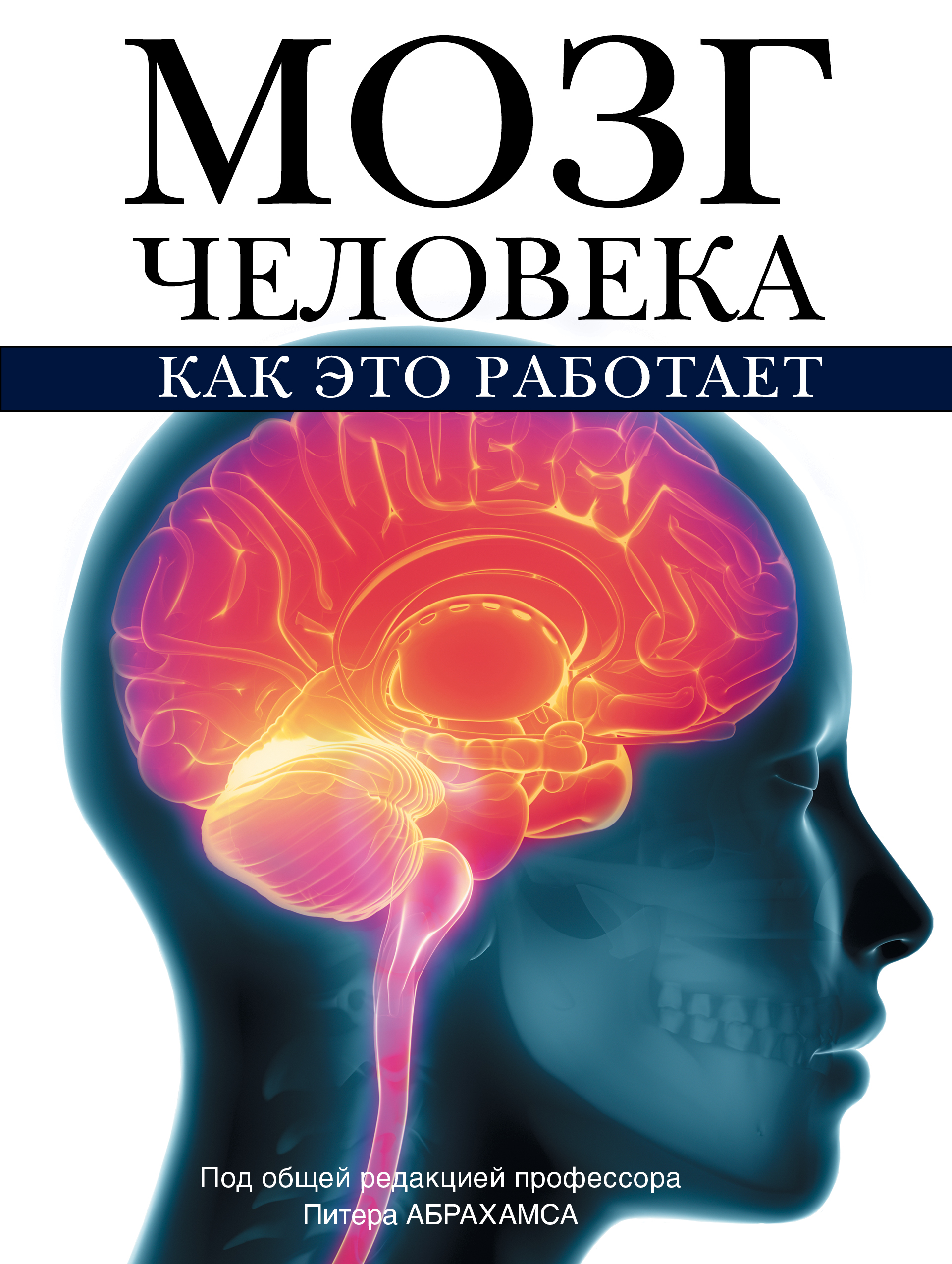 Мозг человека. Как это работает ( Абрахамс П.  )