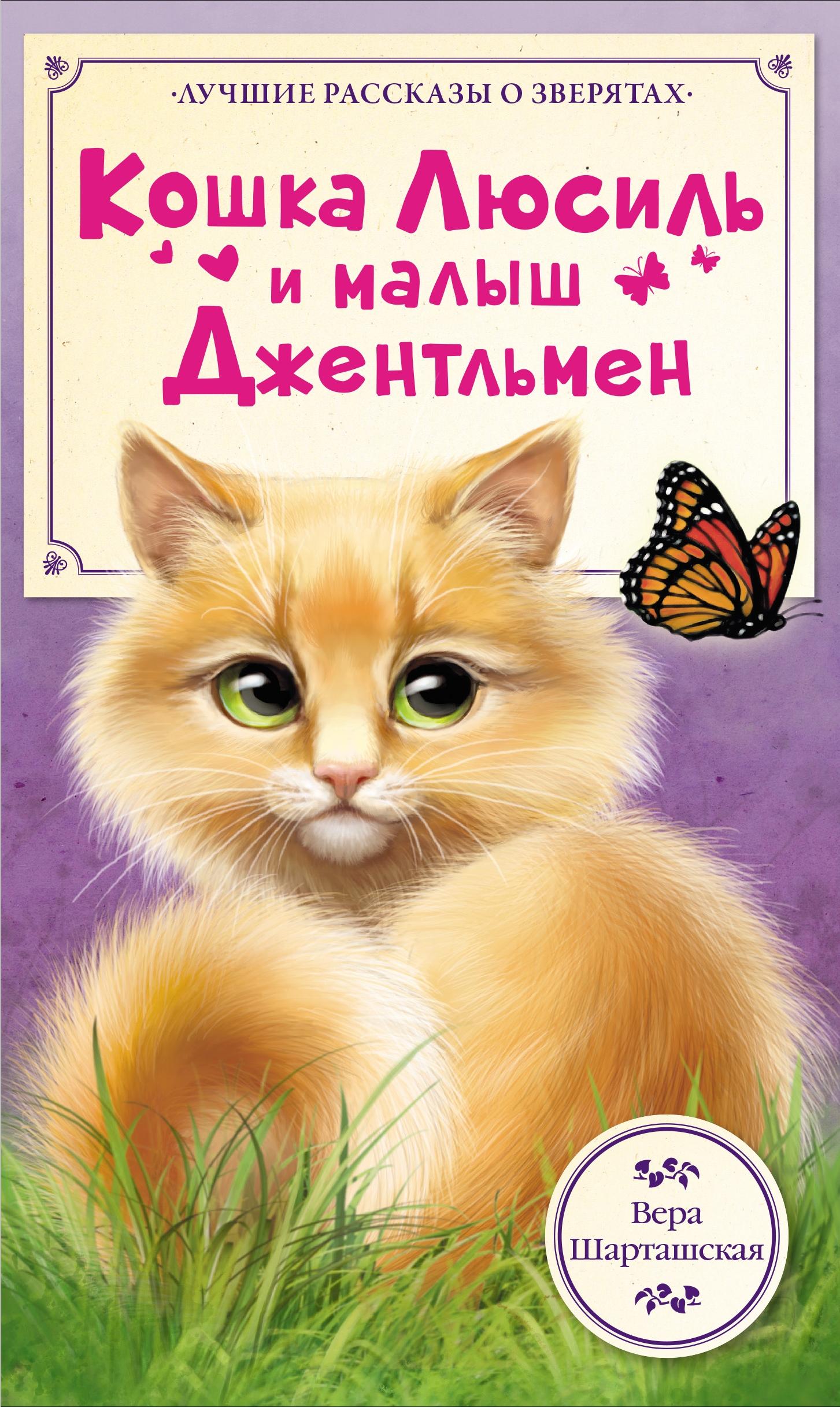 Кошка Люсиль и малыш Джентльмен