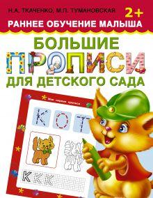 Большие прописи для детского сада. Раннее обучение малыша 2+ обложка книги