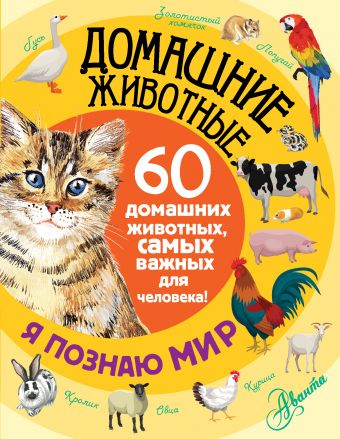 Домашние животные .