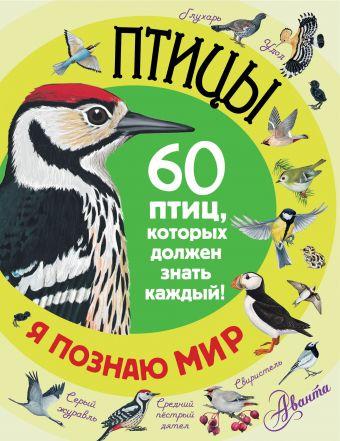 Птицы .