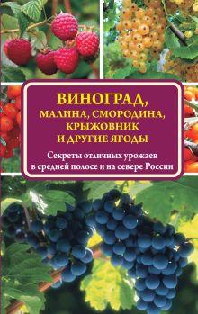 Жвакин В.В. - Виноград, малина, смородина, крыжовник и другие ягоды обложка книги