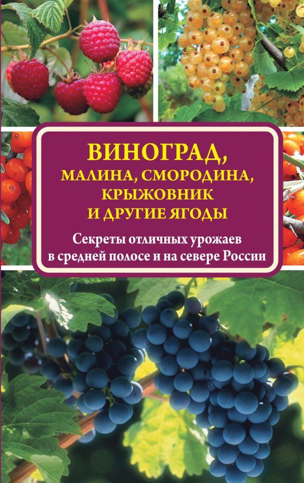 Виноград, малина, смородина, крыжовник и другие ягоды Жвакин В.В.