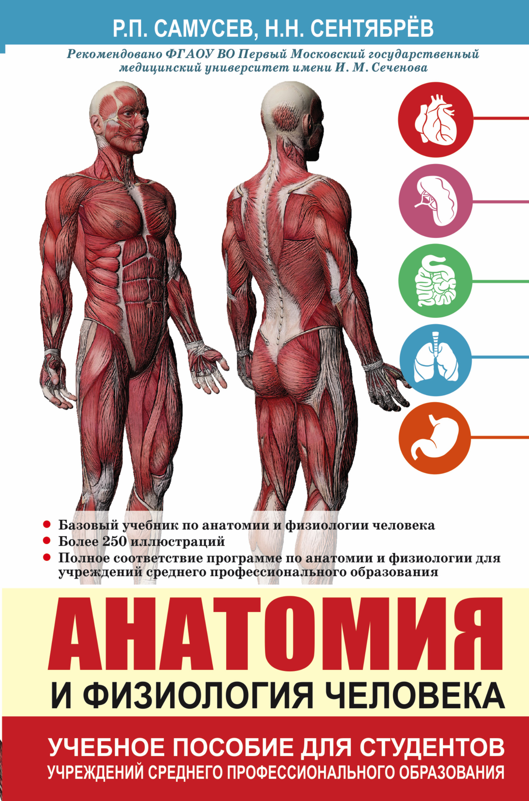 Анатомия и физиология человека. Учебное пособие для студентов учреждений среднего профессионального образования ( Самусев Р.П., Сентябрев Н.Н.  )