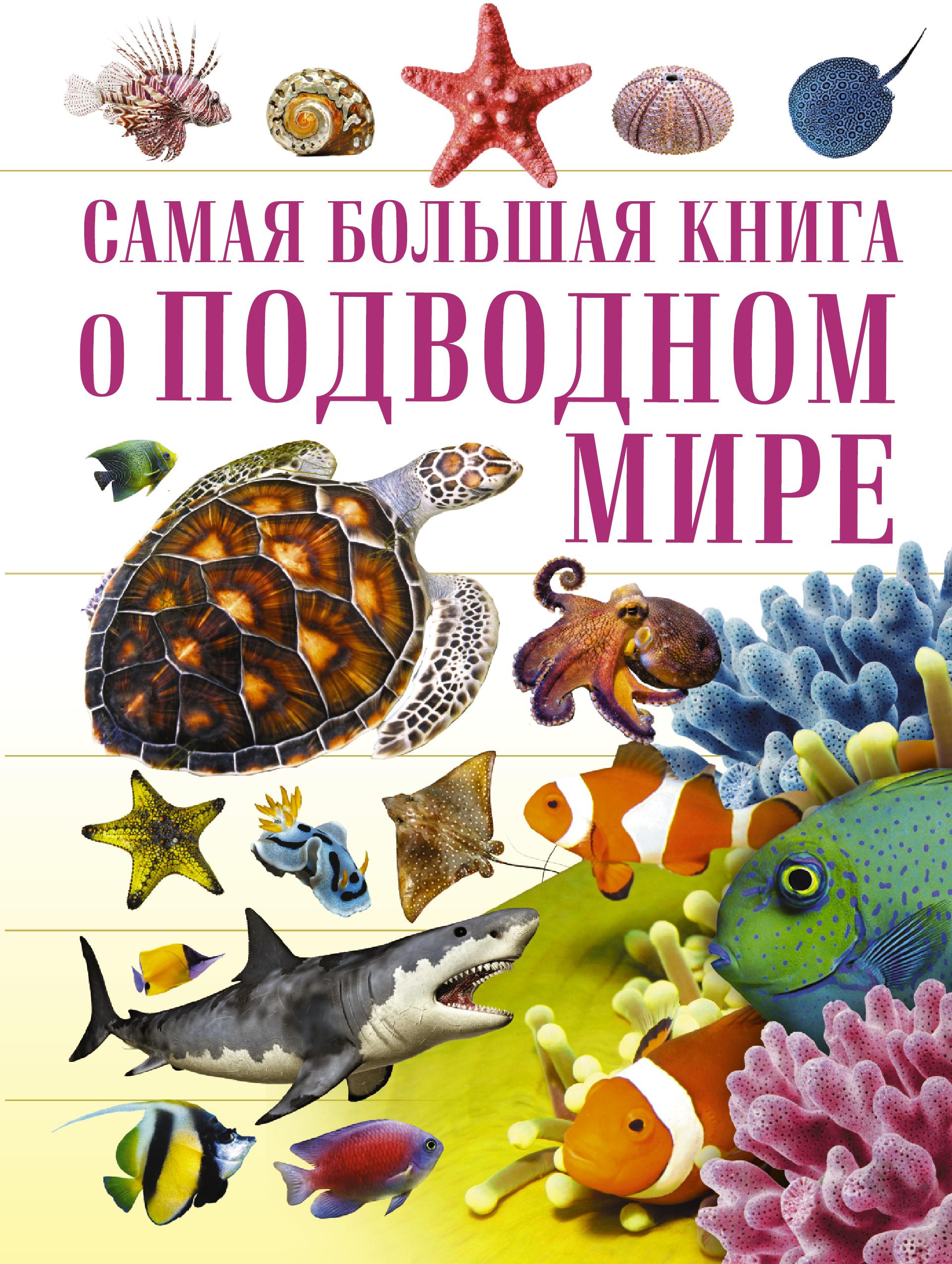 . О подводном мире