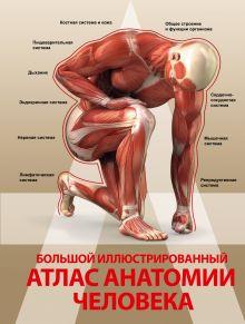 . - Большой иллюстрированный атлас анатомии человека обложка книги