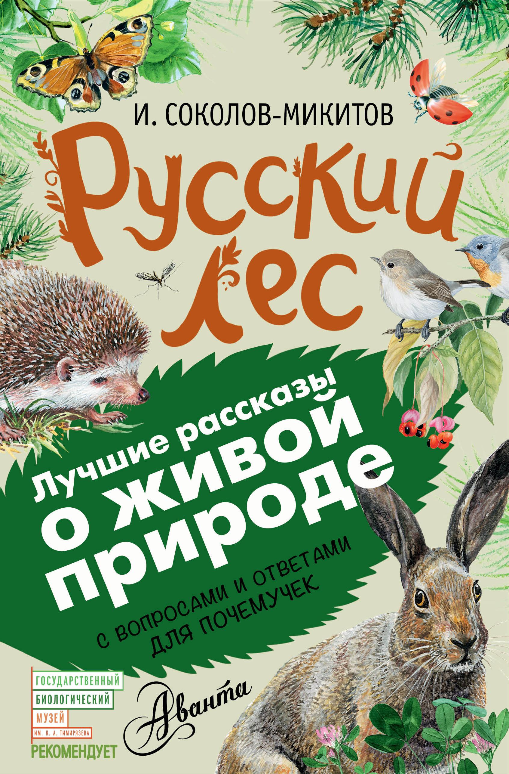 книги про лес картинки книга обещала просто
