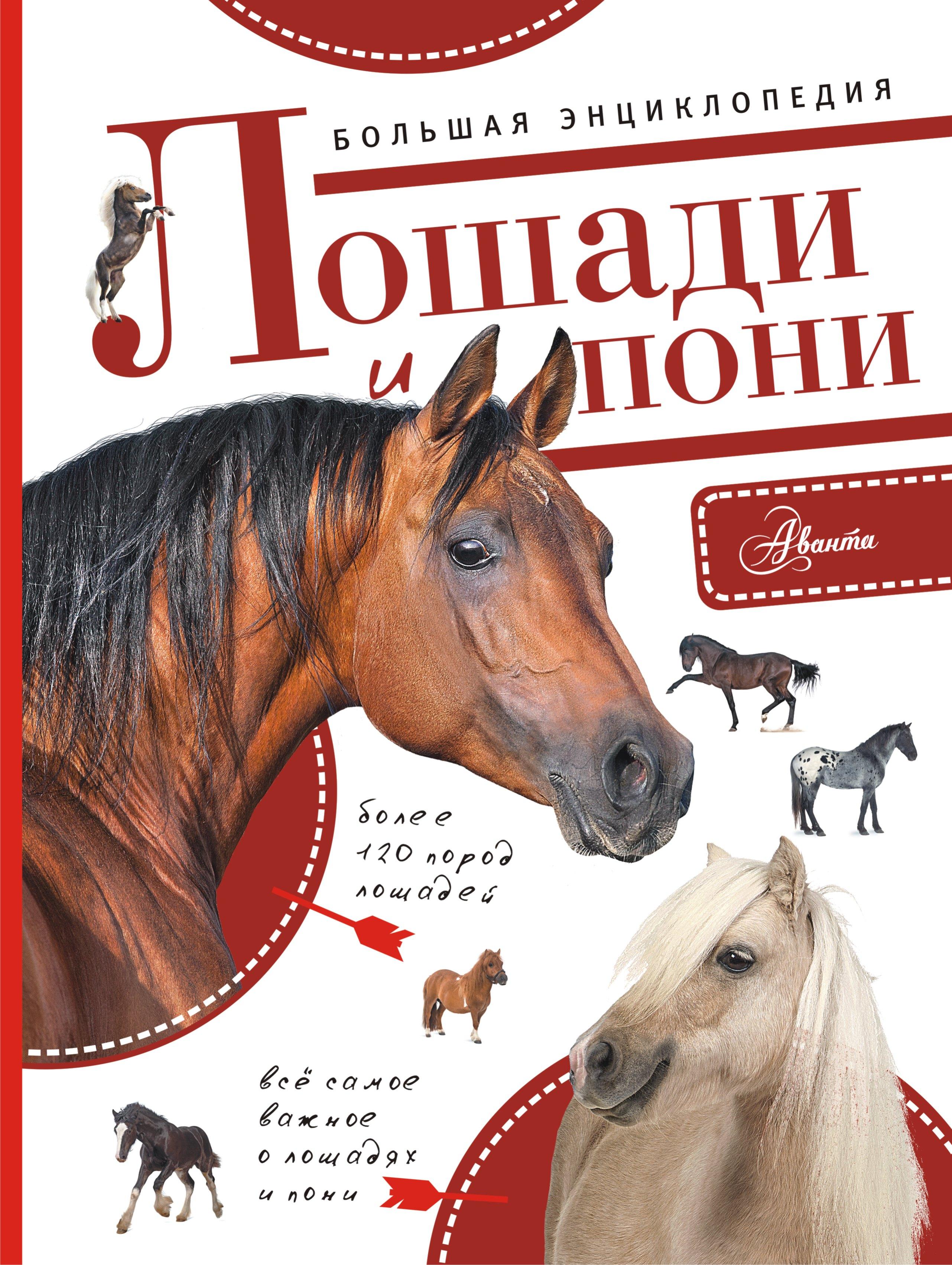 Волков А.В. Большая энциклопедия. Лошади и пони лошади 1000 фотографий