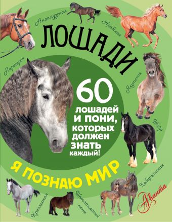 Лошади .