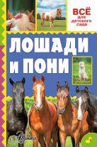 Иванова М.В., Костикова О.Д. - Лошади и пони' обложка книги