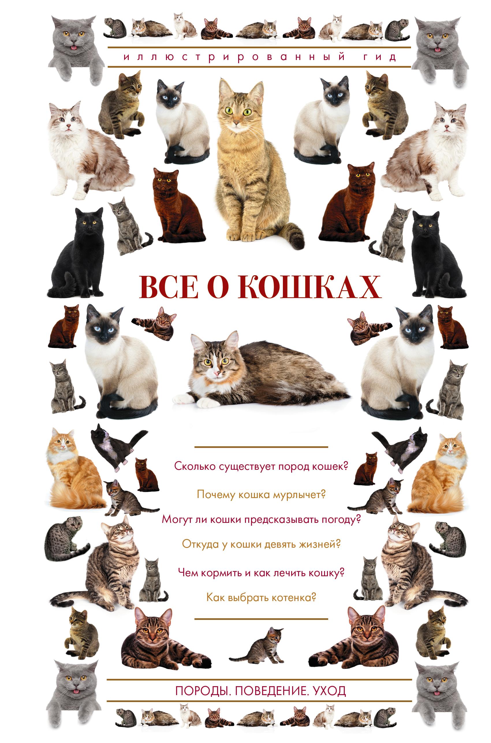 Все о кошках. Иллюстрированный гид ( Непомнящий Н.Н.  )